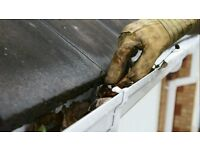 Window cleaning, Gutter Cleaning, Rubbish removal and Fascias