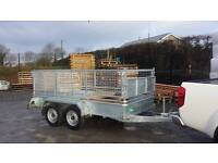 NEW 8x5 TWIN AXLE FACTORY MADE GALVANISED CAR TRAILERS MESHSIDES & RAMPDOOR