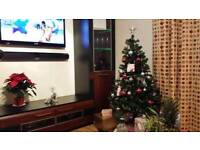 Living / Sitting room cabinet & TV stand