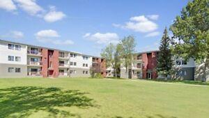 2 Bedroom Apartments - $200 off April Rent