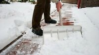 Do you need your driveway shovelled?
