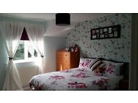 House Swap Fareham (2 Bed Flat-Park Gate, wanting to swap 2/3 Bed House-all Hants Areas Considered)