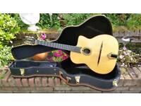 Leo Eimers Gypsy Jazz Guitar