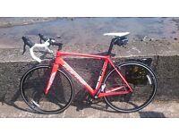 Full Carbon frame, Road/Race Bike, Like new.