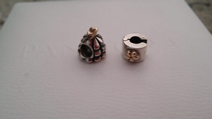 Pandora Charms Rossmoyne Canning Area Preview