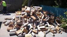 Clean dry solid firewood Hobart CBD Hobart City Preview