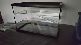 3 Tier Glass Gerbilarium Tank, all proceeds going to charity!
