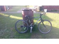 gents townsend mountain bike fully serviced new innertubes today £40 collection only