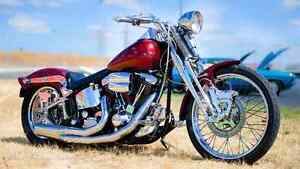 1999 Harley Davidson springer Burnside Melton Area Preview