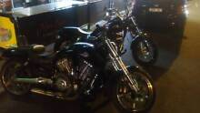 Harley davidson Vrod 2009 Rowville Knox Area Preview