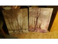 Two large decorative canvases