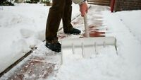 Professional snow removal in St.Albet