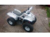 apache 100 cc quad £375!!