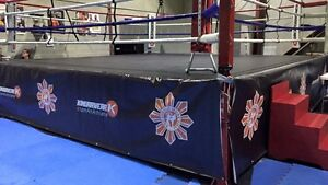 RINGSIDE PROFESSIONAL BOXING RING