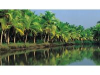 South India Tour Package at Best Price