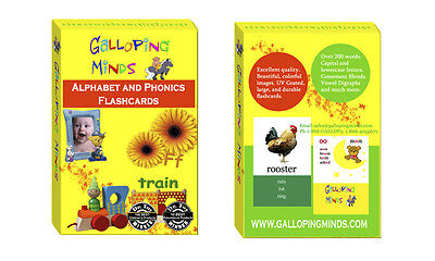 Alphabet, Phonics Flash Cards 170 Words, BEAUTIFUL PICTURES Great Christmas Gift ()