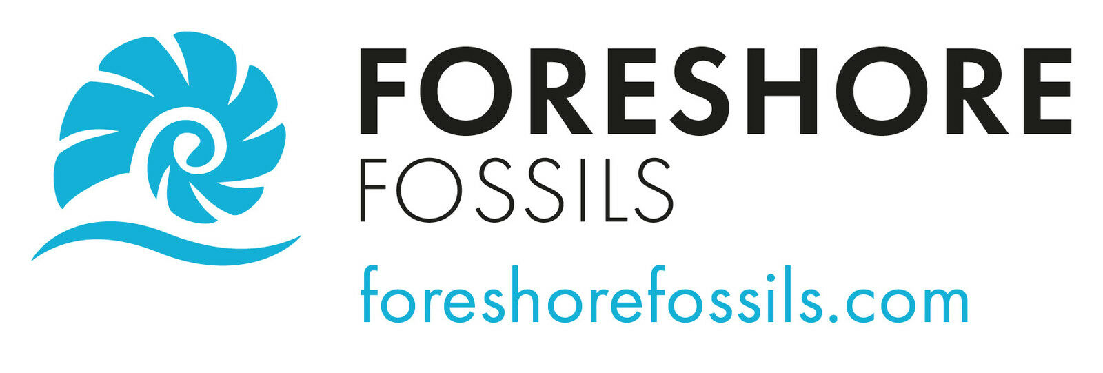 Foreshore Fossils