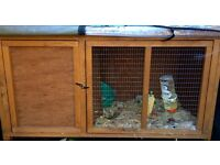 Rabbit hutch only six month old sold rabbit have cage left