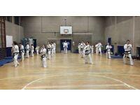 Taekwondo self defence lessons in Dorking Surrey
