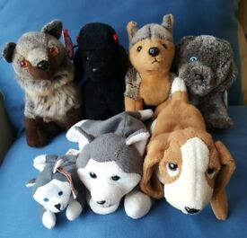 Beanie Baby Dogs (set of 6)
