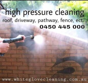 House washing driveway, pathway, walkways,  ect  Greenacre Bankstown Area Preview
