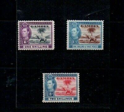 3 Good Cat Value mint & unused Gambia George VI 1/-, 1/-3d & 2/- issues