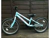 Blue Girls Bike