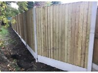 🏅New Flat Top Feather Edge Fence Panels • Excellent Quality • Wooden • Tanalised