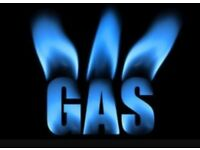 Looking for a gas safe engineer for help with my gas course