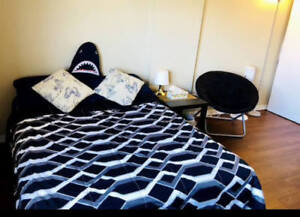 Big Room For Sublet in Downtown Halifax