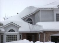 Snow removal- Fully Insured