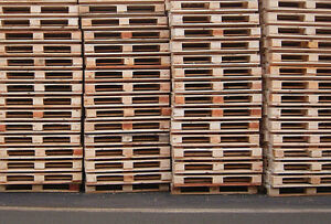 Free Pallets | Firewood | DIY Projects