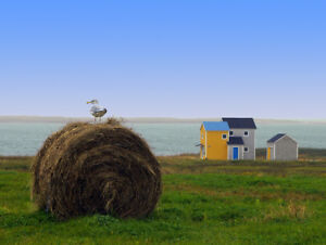 Chalet à louer, Havre-Aubert, Îles-de-la-Madeleine
