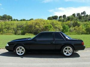 WANTED MUSTANG NOTCHBACK