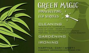 EXPERIENCED FEMALE CLEANER / GARDENING / IRONING Perth Perth City Area Preview