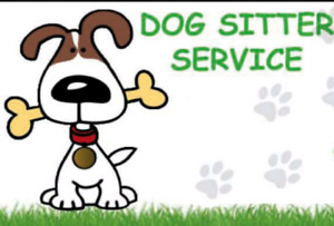 Do you need a dog sitter