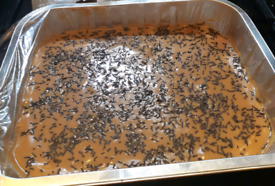 Caramel tart tray bake