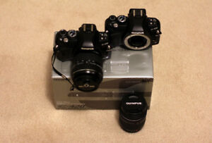 CHEAP! Olympus E-420 & E-410 set with two lenses