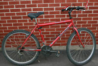 Triumph Extreme 18 Speed Mountain Bike