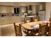 Double Bedroom to rent in Shared House in Central Exeter - £320 pcm