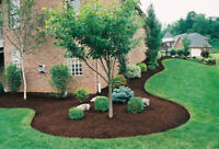 Spring Clean Up & Landscaping