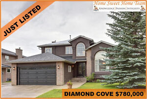 STUNNING OPEN CONCEPT DIAMOND COVE HOME WITH NEW UPGRADES