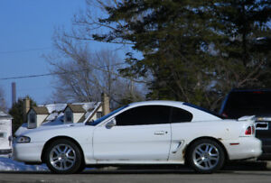 Rippen Ford Mustang GT