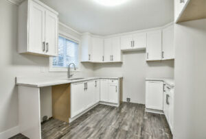 Brand New Reno 2 Bedroom 1 Bath Langley Center