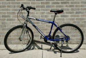 Adult Schwinn Bike
