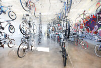 Bicycle Mechanic and Bicycle sales.