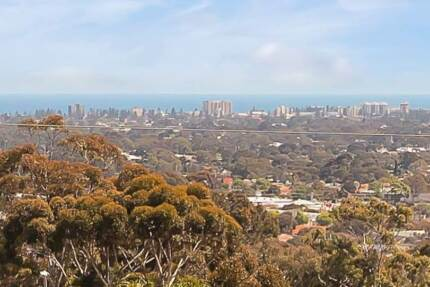 ROOM TO MOVE WITH VIEWS ALL THE WAY TO THE COAST! Pasadena Mitcham Area Preview
