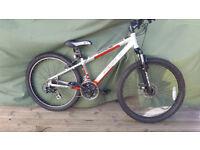 adult RBK radium mountain bike