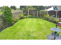 Professional Gardener /Landscaper, all aspects including Jet washing and decking cleaned etc