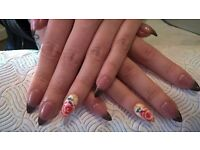 Mobile Nail Technician Service (Manicure,Pedicure,Gel,Acrylic,Shellac,Art,etc)